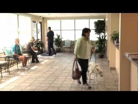 Advanced Veterinary Care Center - Tour of the Facility