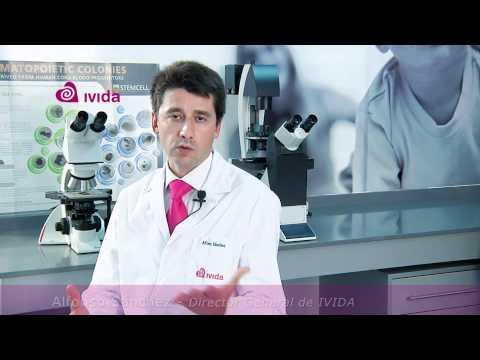 ¿Cómo se aplican las células madre en el tratamiento de leucemias o enfermedades tratables de la sangre?