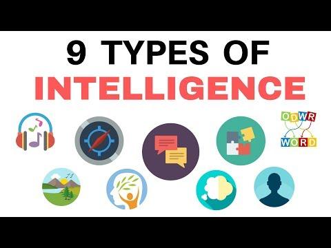 HOW TO INCREASE IQ आपमें कोनसी कोनसी है ? 9 TYPES by SeeKen