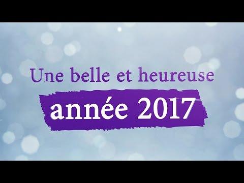 Meilleurs voeux 2017 !