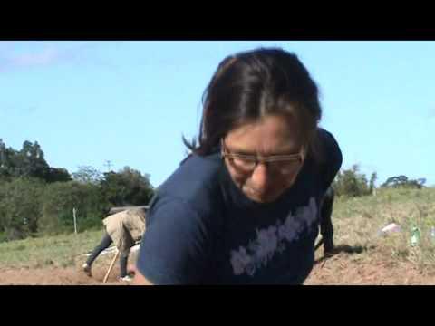 Ocupar, Resistir e Produzir - Ocupação Sem Terra em Viamão/RS