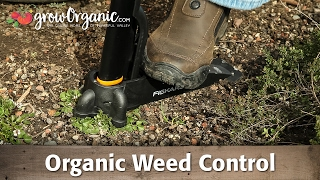 Organic Weed Control - Mulch, Corn Gluten Meal, Flamers and More!