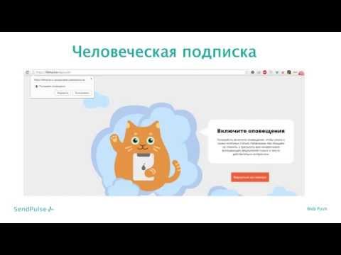 Web Push уведомления: особенности инструмента и успешные кейсы