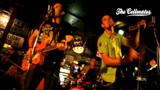Nonton The Cellmates Live At Harley Davidson Pub 9 2012 Film Subtitle Indonesia Streaming Movie Download