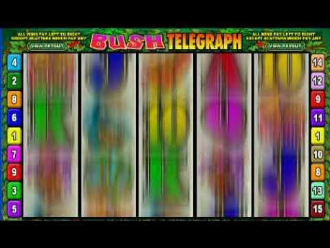 Casino Games Cinema Casino: Bush telegraph