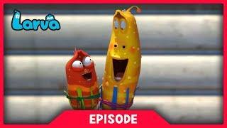 Video LARVA - SHADE | Cartoon Movie | Cartoons For Children | Larva Cartoon | LARVA Official MP3, 3GP, MP4, WEBM, AVI, FLV November 2018