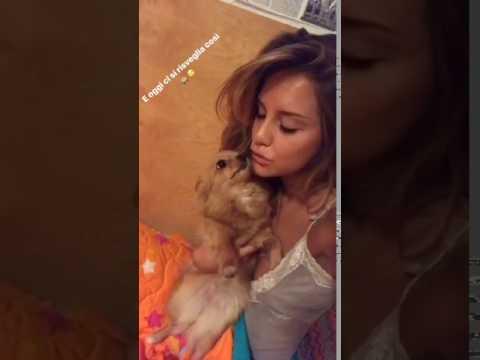 Rugani dorme, Michela Persico lo tradisce col cane!