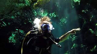 Cenote Cave Dive in Cancun - Movie Trailer or Music Video