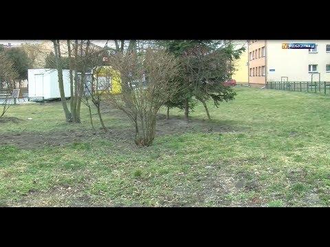 Zagospodarowanie terenów zielonych w mieście Włoszczowa