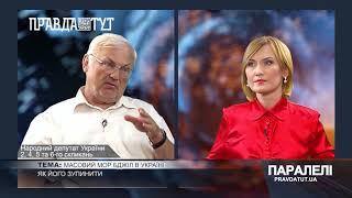 «Паралелі» Володимир Стретович: Масовий мор бджіл в Україні