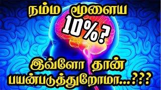 Video நம்ம மூளையா இவ்ளோ தான் பயன்படுத்துறோமா    Brain Usuage Myth MP3, 3GP, MP4, WEBM, AVI, FLV Desember 2018