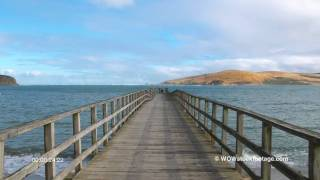 Omapere New Zealand  City pictures : Wharf and lapping waves at Omapere. New Zealand