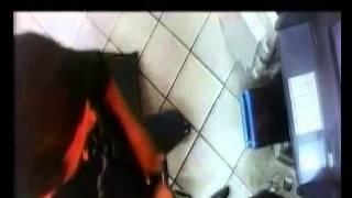 Delincuentes asaltaron  a unos trabajadores de Prosegur y se llevaron S/.300 mil cuando estos abastecían un cajero automático del Banco de Crédito del Perú en el minimarket de un grifo en Talara (Piura).Los hampones ingresaron al establecimiento haciéndose pasar por clientes y compraron unas gaseosas. De repente, sacaron sus pistolas y atacaron a los empleados de Prosegur, hiriendo a uno de ellos en el hombro izquierdo.Tras apoderarse del dinero, escaparon en una camioneta blanca, señalaron algunos testigos.El empleado herido, identificado como José Pacherre (55), se recupera en el Hospital Cayetano Heredia de Piura.
