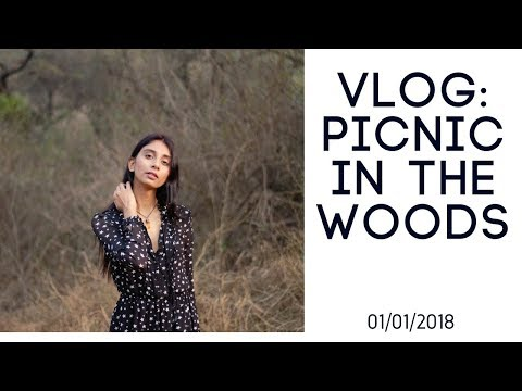 Vlog: Picnic In The Woods/ 1st Jan 2018