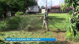 Aplicativo que fiscaliza terrenos em Bauru recebe 100 denúncias em cinco horas