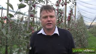 #212 Redloves in Australia - Interview with Mark Joyce of Lenswood Apples