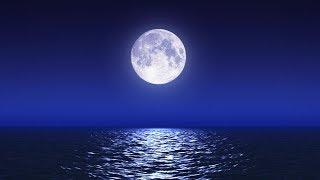 Relaxante MÚSICA PARA DORMIR com suave som das ondas do mar e sons da natureza, música relaxante para meditar e relaxar com piano suave e outros instrumentos acompanhados do som de água, pássaros e floresta. Dormir profundamente, vídeo HD do mar com lua cheia, tela escura para ajudar a relaxar e dormir.Playlist Música Dormir: https://www.youtube.com/playlist?list=PLF976D22AF995BCDD