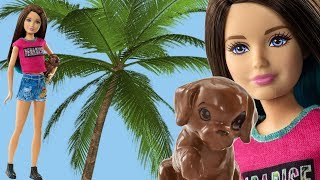 Nonton Skipper And Her Puppy Chase In Barbie And Her Sisters Release Film Subtitle Indonesia Streaming Movie Download