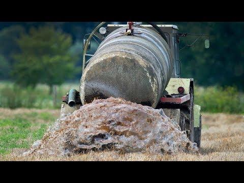 Nitrat-Belastung: EU-Kommission macht gewaltig Druck auf Deutschland