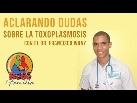 Aclarando dudas sobre la Toxoplasmosis