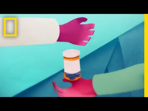This Is What Happens to Your Brain on Opioids | Short Film Showcase