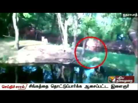 Nehru-Zoological-Park-Drunk-Man-Jumps-into-Lion-Cage-Hyderabad