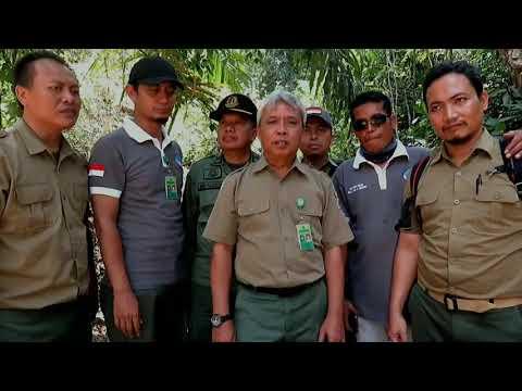 Pelepasliaran Satwa di Wilayah Balai Taman Nasional Meru Betiri