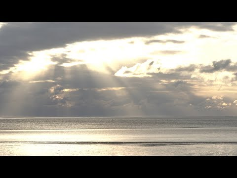 Wattwandern bei vollkommener Stille – Wie hört sich d ...