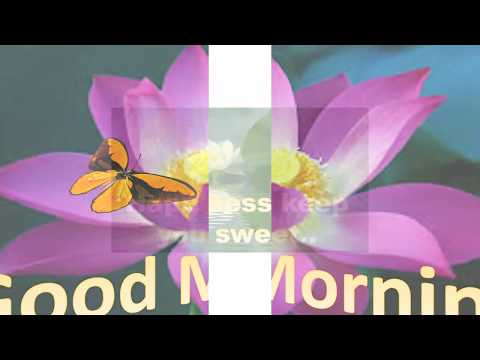 Nice quotes - Latest Good morning wishes, sms, greetings, whatsapp video message