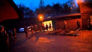 Chasse Au Gros Gibiers Dans Les Ardennes Saison 2
