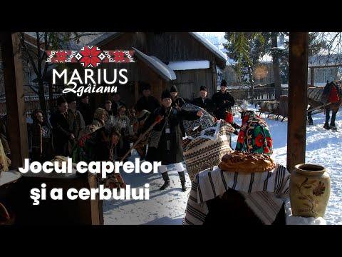 Marius Zgâianu - Jocul caprelor şi cerbului - Contact: Tel: 0742 080 183 / www.mariuszgaianu.ro