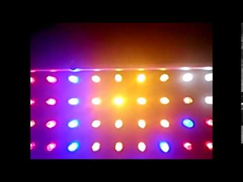 REVIEW 14W US EU LED Plant Grow Light Panel Hydroponic SKU035854