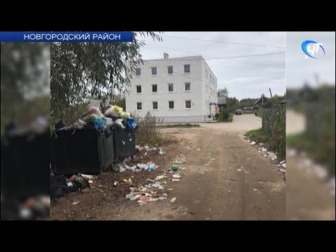 Жители поселка Пролетарий утопают в мусоре