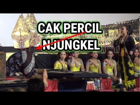 Download Video Percil Cs Proborini Ki Sun Gondrong - 9 Mei 2018 - Wlingi Blitar