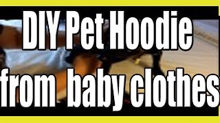 Make a cute Pet Hoodie from Upcycled Baby Clothes! - YouTube