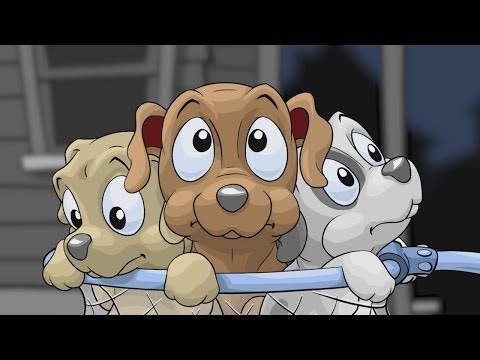 Video of Save the Puppies Premium