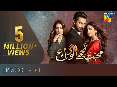 Mohabbat Tujhe Alvida Episode 21 | Eng Sub |Digitally Powered By Master Paints | HUM TV Drama