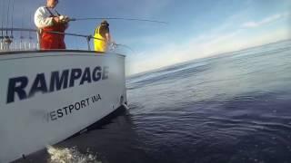 Download Lagu RAMPAGE Sportfishing Mp3