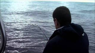 Video Pescaria Pargos e Safios Barco Micas.wmv MP3, 3GP, MP4, WEBM, AVI, FLV Desember 2017