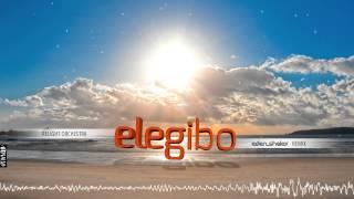 Relight Orchestra - Elegibo (Eden Shalev 2015 Remix)