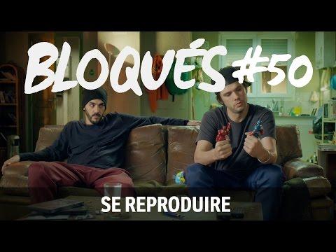 Bloqués #50 - Se reproduire
