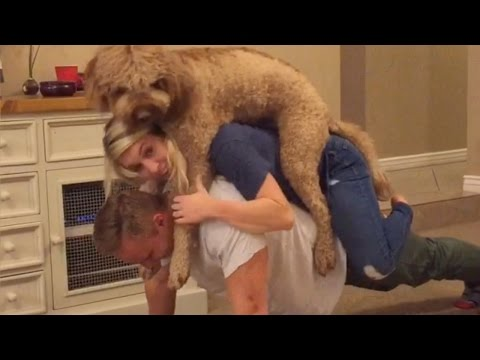 You Aren't Hardcore About Fitness and Family Unless You Include Your Dog Like This Couple