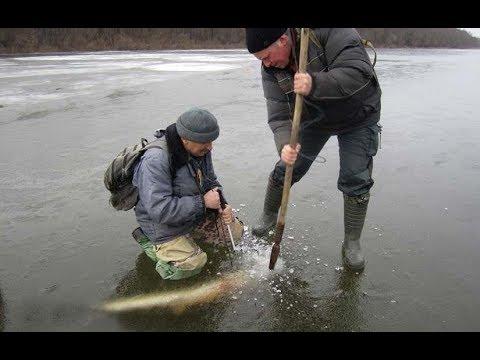Как Ловить Щуку на Жерлицы Зимой. Поиск Рыбы и Способы Ловли на Живца - DomaVideo.Ru