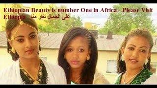Algemal على الجمال تغار منا بالاثيوبي