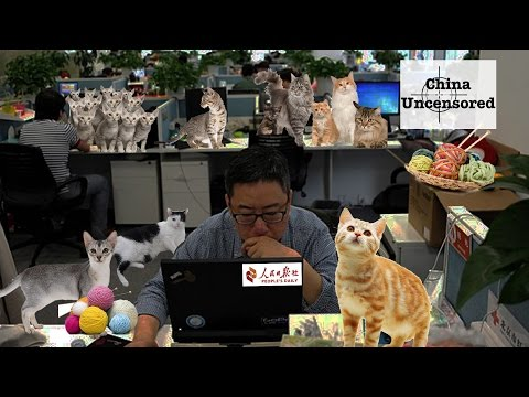 China - China's state-run Party mouthpiece the People's Daily must have been taken over by cats. At least, that seems the only explanation for the string of editorials and opinion pieces criticizing...