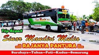 Video BERANI ADU BANTENG! Bus SINAR MANDIRI, RAJANYA PANTURA! Trip Report Surabaya—Pati MP3, 3GP, MP4, WEBM, AVI, FLV Juni 2018