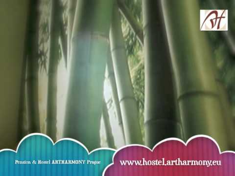 Video av Artharmony Pension & Hostel