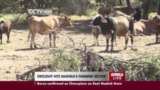 Namibia is currently experiencing the worst drought in 14 years. Even though the agricultural sector might experience the full...