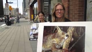 NRML Fur Protest Aug. 23 2014