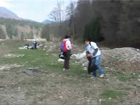 Actiune de ecologizare